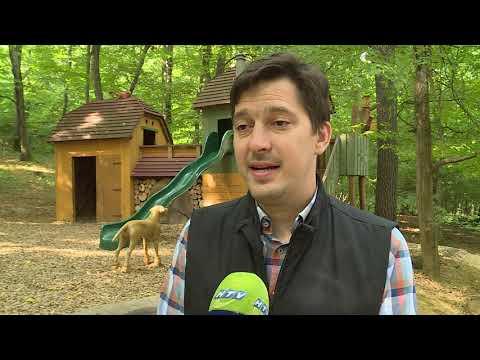 Az óvintézkedések betartásával várja látogatóit a Budakeszi vadaspark