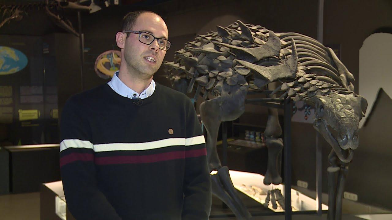 Vadőrző - A páncélos dinoszauruszok