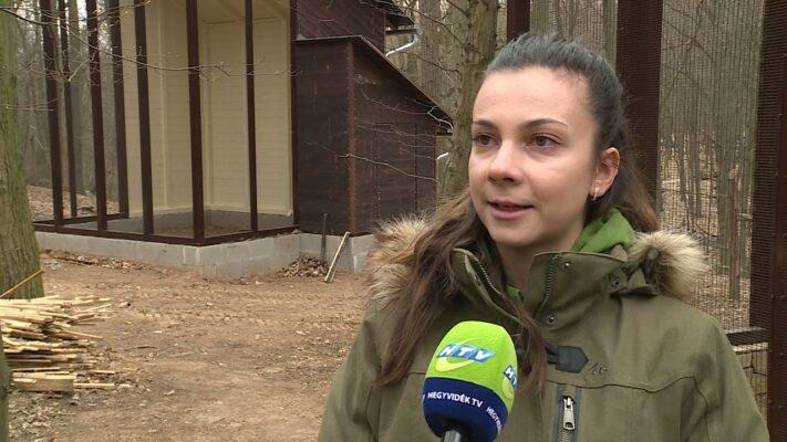 Folytatódik a Budakeszi Vadaspark fejlesztése